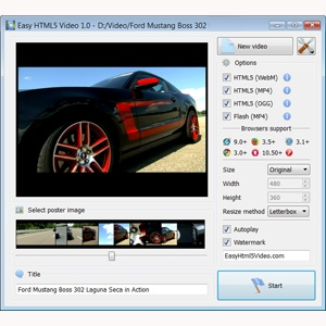 html5 video player supported formats